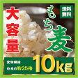 【送料無料】もち麦 10kg(1kgX10個) 28年産/送料無料/韓国産/ダイエット麦ごはんご飯 もちむぎ 大麦 βグルカンを含有する 麦ご飯 雑穀の麦 栄養 健康 食物繊維を豊富に含んでいる