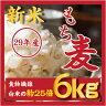 もち麦 6kg 新米29年産/ダイエット麦ごはん/ご飯 /もちむぎ /大麦 /麦 ...