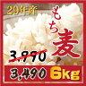 ☆もち麦 6kg 【1kgX6個】新麦29年産 ダイエットもちむぎ 大麦 麦 βグ...