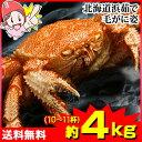 北海道浜茹で毛がに姿 約4kg(10〜11杯)【送料無料】