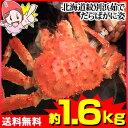 北海道紋別浜茹でたらばがに姿【約1.6kg】【送料無料】[特大|ボイル|ボイル済み|ボイル姿|かに|...