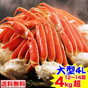 大型4Lボイルずわい蟹肩脚 12〜14肩 4kg超[脚肩|ボイル済み|茹で|ボイルずわい|ボイルズワイ|ボイルずわい蟹|ずわい蟹|ズワイ蟹|ズワイガニ|ズワイ]