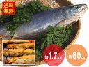 【送料無料】新巻鮭 約1.7kg 約60cm(冷凍)【塩鮭】【姿】【秋鮭】