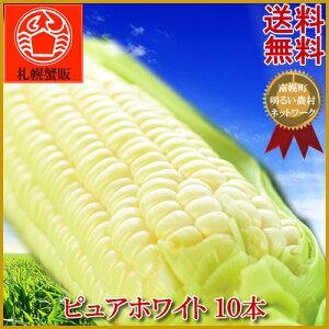 【早期予約受付中】真っ白なトウモロコシピュアホワイト 10本入り 送料無料北海道産/とうもろこ...