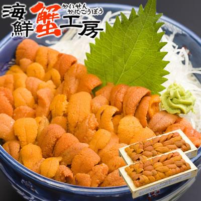 網走産 蝦夷バフンウニ 2折(100g×2折)生ウニ 北海道 うに 国産 ウニ バフンウニ 雲丹 海胆 海胆 ギフト プレゼント 母の日 父の日