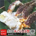 活〆本タラバ脚生冷【焼き蟹用 最高品質フルシェイプ】 極上一本物(1肩800g前