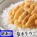 訳あり 塩水生雲丹100g前後無添加の塩水エゾバフンウニ。色目、形崩れのわけあり品ですが、生うにの甘さ・とろける舌触りが味わえます。獲れたての雲丹をそのまま塩水パック。北海道グルメ食品 魚介類・シーフード ウニ バフンウニ 塩水
