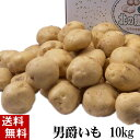 (送料無料) じゃがいも 男爵いも 10kg(芋・新じゃが) 北海道富良野美瑛町産のジャガイモ、男...