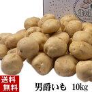 (送料無料)じゃがいも男爵いも10kg(芋・新ジャガイモ)北海道産のジャガイモ、男爵芋です。肉じゃが、じゃがバター、コロッケの調理に。北海道グルメ食品野菜・きのこジャガイモ男爵芋