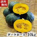 (送料無料)北海道産カボチャ ダークホース10kg前後(5〜7玉入り)粉質でホクホクな南瓜。てんぷらやかぼちゃスープ、かぼちゃの煮物など、様々料理にご利用できる緑黄色野菜です。北海道グルメ食品 野菜・きのこ かぼちゃ