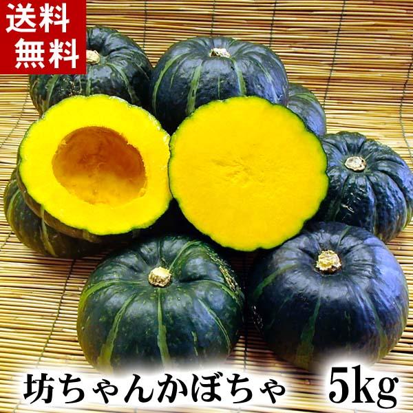(送料無料)北海道産小玉カボチャ 坊ちゃんかぼちゃ 5kg前後(8~10玉入り)粉質でホクホクな南瓜。てんぷらやかぼちゃスープ、かぼちゃの煮物など、様々料理にご利用できる緑黄色野菜です。北海道グルメ食品 野菜・きのこ かぼちゃ