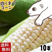 とうもろこし ホワイト・ホワイトレディー・クリスピーホワイト トウモロコシ スイートコーン ホワイト