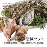 ギフト 送料無料 牡蠣 かき ツブ 貝 活貝セット 殻付き牡蠣10個と真つぶ貝2個のセット 冷蔵 北海道 厚岸 生牡蠣 マルえもん ギフト 内祝い お返し