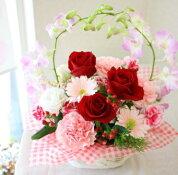 赤いバラとデンファレののアレンジメント/花ギフト/フラワーギフト/お祝い/結婚祝い/記念日/誕生日/母の日/開店祝/プレゼント