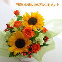 かわいい夏の贈り物/ひまわり 送料無料 花 ギフト フラワーギフト お祝い 誕生日 母の日 お見舞い 父の日 敬老の日 感謝の花 夏の花