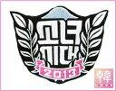 【K-POP・韓流】 【ゆうメール発送】少女時代/団体ver/(大)Wappen Brooch(Leaf)「I Got A Boy」)(10007...
