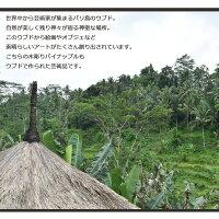 木彫りパイナップル【L】H23cm木彫りパイナップル木彫り置物パイナップルパインフルーツ果物南国オブジェインテリア雑貨木製ウッド木おしゃれオシャレ北欧モダンナチュラルペイントカラフル手作りアンティークディスプレイアジアンバリ