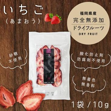ドライフルーツいちご あまおう 10g ドライフルーツ 砂糖不使用 無添加 国産 福岡県産 あまおう蜂蜜専門店 かの蜂