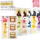 【母の日ギフト】蜂蜜3種とハーバリウムギフトセット Herb...