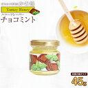 訳あり【アウトレット】はにふれ「チョコミント」フレーバー蜂蜜 フレーバーハニー(45g) ※賞味期限:2021年7月まで蜂蜜専門店 かの蜂