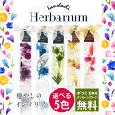 ハーバリウム1本 Herbarium 癒しのインテリア 選べ...