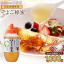 国産 はちみつ そよご蜂蜜(はちみつ)とんがり容器 1000g 蜂蜜専門店 かの蜂 生はちみつ 非常食 100%純粋 健康 健康食品