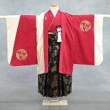 「紅白紋章」七五三レンタルレンタル五歳