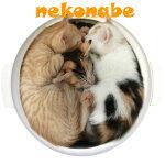 猫鍋土鍋型ネコベッドヒーター付きNEKONABEPETPODBEDWG-001M