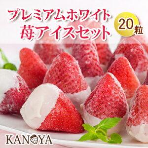 一粒一粒小箱に入った プレミアムホワイト苺アイスクリームセット (短冊のし)