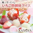 【送料無料】いちご四姉妹アイスクリームセット (短冊のし) ギフト