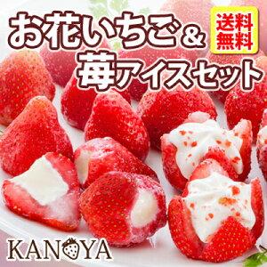 お中元 お花のようないちごアイス&苺アイスクリームセット 送料無料 ギフト 中元 (短冊のし)