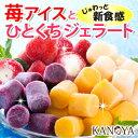 お中元 ギフト 【送料無料】苺アイスと3種のひとくちジェラートセット ギフト (短冊のし)