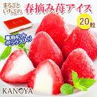 春摘み苺アイス(20粒入)R