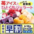 【送料無料】苺アイスと3種のひとくちジェラートセット ギフト (短冊のし)