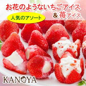 【送料無料】お花のようないちごアイス&苺アイスクリームセット (短冊のし)