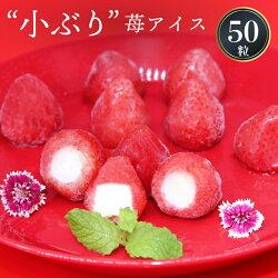 小ぶり苺アイスクリーム(50粒入)