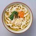 鹿野屋冷凍うどん(5食×2袋)