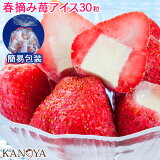 アイス アイスクリーム 袋包装 苺アイスクリームセット(30粒入)