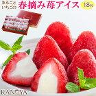 春摘み苺アイス(18粒入)R