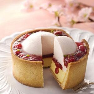 フレーズフォンデュ 寿製菓 KAnoZA カノザ 春限定 季節限定 イチゴ 苺 ギフト プレゼント お祝い 内祝 ケーキ イチゴのケーキ 贈り物 ワイン