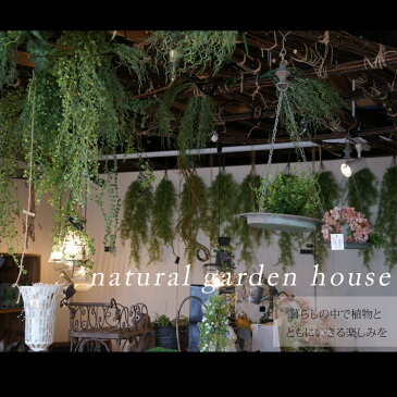 人工観葉植物 おしゃれ アートグリーン フェイクグリーン アーティフィシャルグリーン フレーム オーナメント 花造花 造草 壁掛け ハンキング