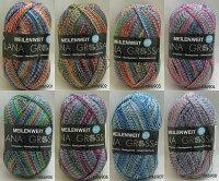 ☆COLORADOコロラドソックスヤーンGaimersheim(ドイツ製)靴下用毛糸スキー毛糸編み物