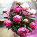 シャクヤクの花束【レビューで割引クーポン進呈】【送料無料】立てば芍薬♪豪華で素敵な贈り物...
