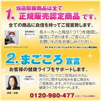 くびれツイスターキュキュッDR-9900【ポイント10倍】