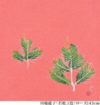 【送料無料+桐箱付】絹の風呂敷 川端龍子・若松(色:ローズ) 45cm 唐草屋