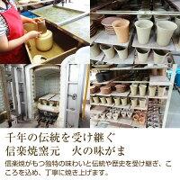 千年の伝統を受け継ぐ信楽焼窯元火の味がま