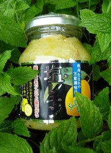 爽やかな酸味とまろやかなしょっぱさが料理の味を際立たせる国産レモン使用話題の塩レモン♪5個...