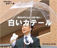 【開運&大願成就】★ビジネスマン激励支援企画★勝てる雨傘☆シンカテール☆単品販売(送料600)