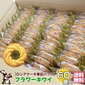 ロシアケーキ単品パック60個入フラワーキウイ