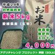 新米『爽羅』SOLA(玄米) 愛媛産平成28年度米 プレミア自然栽培・天日干米(2個購入で送料無料)